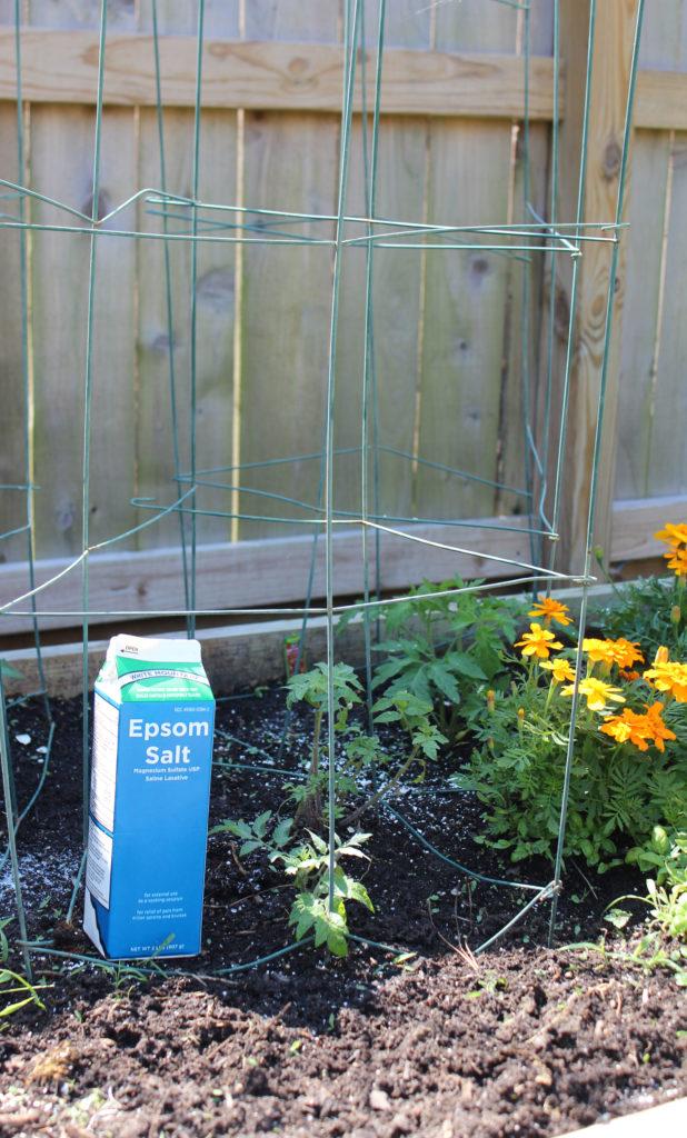 Easy Garden Ideas- Epsom Salt