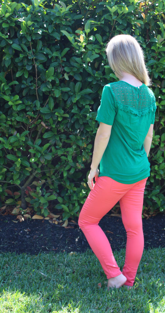 Stitch Fix -Syvanna Crochet Yoke Knit Top by Daniel Rainn & Kamala Skinny Jean by Tinsel