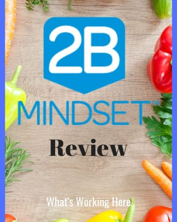 2B Mindset Review