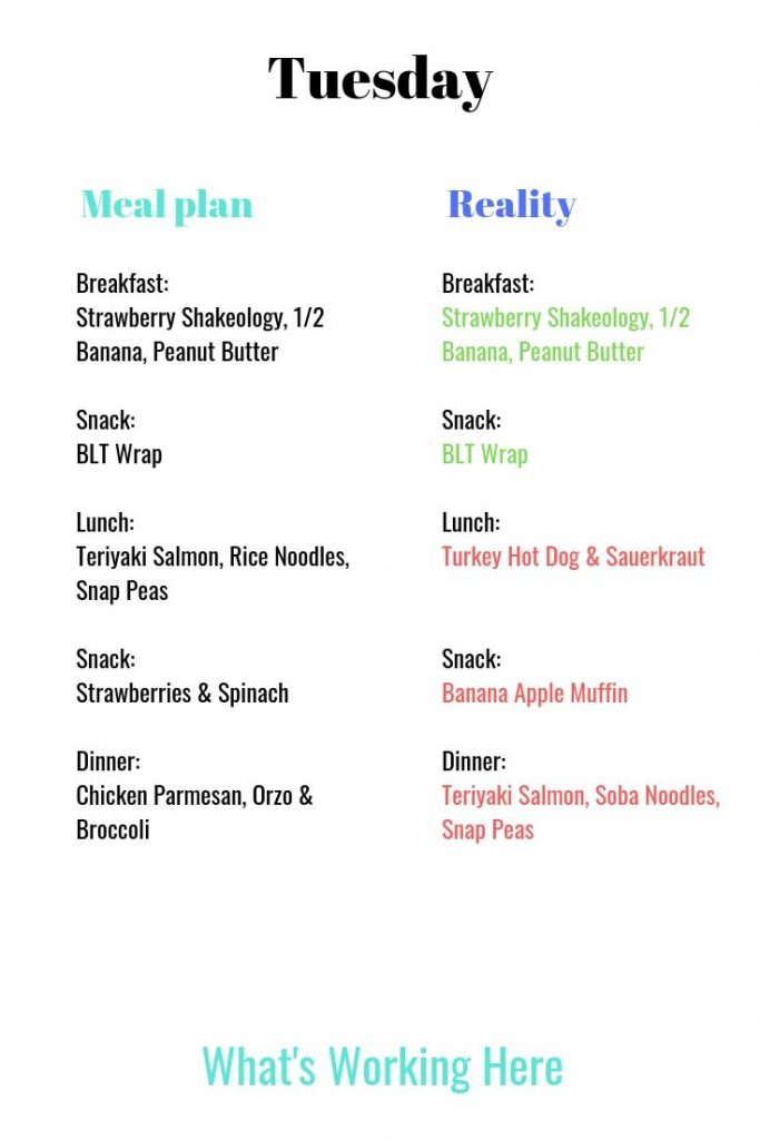 Meal Plan vs Reality tuesday