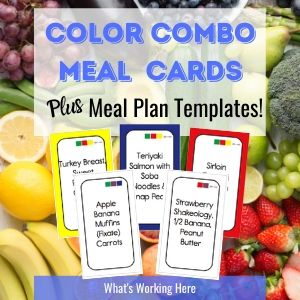 What's Working Here- Color Combo Meal Cards plus Meal Plan Templates for Portion Control Meal Planning